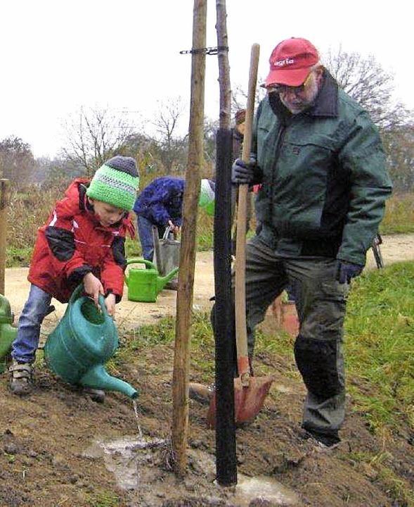 Im Rahmen einer  Aktion des Truz wurden unlängst bei Kembs Apfelbäume gepflanzt.  | Foto: Privat