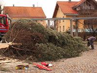 Sturm fegt Weihnachtsbaum auf Rathausplatz um