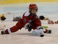 Freiburger Eishockeyfans spenden 2627 Kuscheltiere
