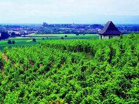 Grüner Tourismus: Unterwegs auf der Route Verte