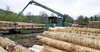Mitgliedschaft in der Waldservice Ortenau angestrebt