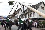 Fotos: Narrenbaumstellen beim Narrentag in Waldkirch