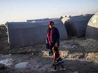 Traumatisierte Flüchtlinge – wie können Therapeuten helfen?