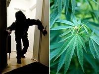 Mehr Einbr�che und mehr Cannabis im S�dwesten