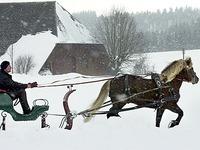 Schwarzwald: Wie man fr�her im Winter vorankam
