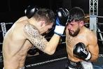 Fotos: Kampfsportnacht in Lahr