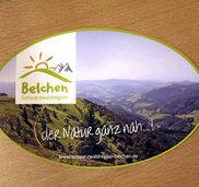 """Die """"Schwarzwaldregion Belchen"""" entwickeln"""