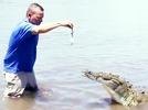 """""""Krokodilmann"""" begeistert Touristen"""