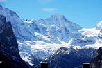 Leserfahrt der Badischen Zeitung in die Schweizer Alpen