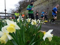 Fotos: Marathon in Freiburg - Lauf- und Volksfest in einem
