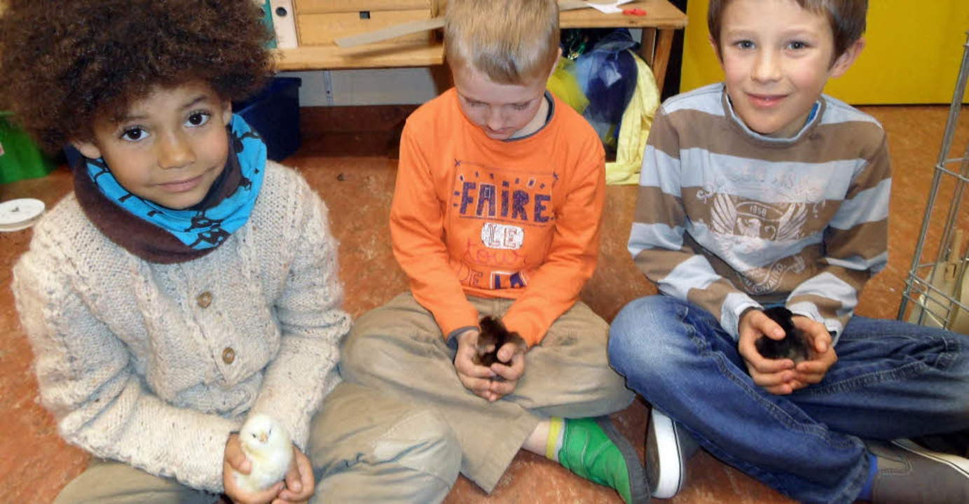 Viel Spaß haben Jonah,  Lorenz und Luis   mit den süßen Küken.   | Foto: Faller