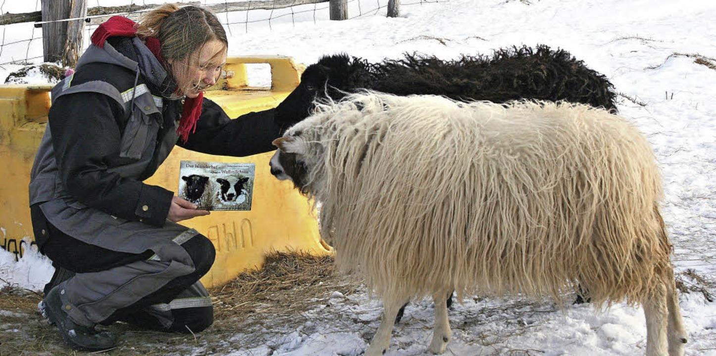 Liebeserklärung in Buchform: Caroline ... Mende mit Buch und zwei ihrer Schafe   | Foto: Örn Þórarinsson