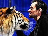 Dompteur Christian Walliser schmust mit Tigern in Freiburg