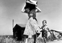 Robert Capa: Israel - Einwanderung 1948 bis 1950