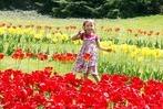 Fotos: Das Tulpenfest in Lahr