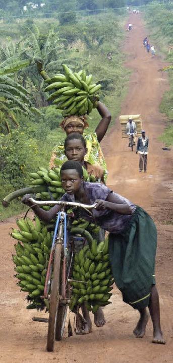 Mit vielen Bananen unterwegs: Kinder in Uganda privat   | Foto: privat