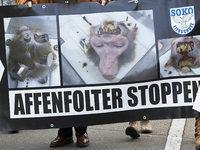 Tübinger Institut verzichtet auf Affenversuche