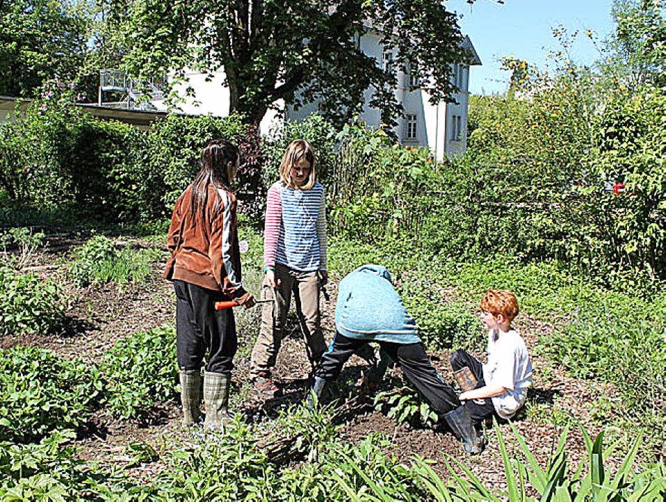 Im bunten Schulgarten macht den Waldorfschülern die Arbeit sichtlich Spaß.     Foto: Waldorfschule
