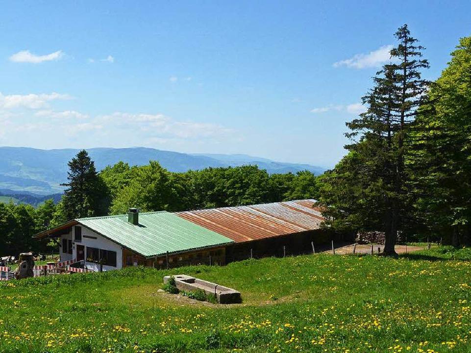Die Gummenhütte liegt auf 1133 Metern.  | Foto: Max Schuler