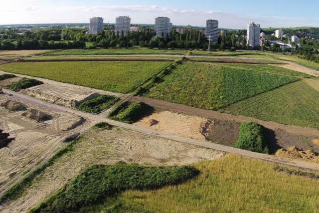 Warum haben die Bauarbeiten für die Landesgartenschau so lange geruht?