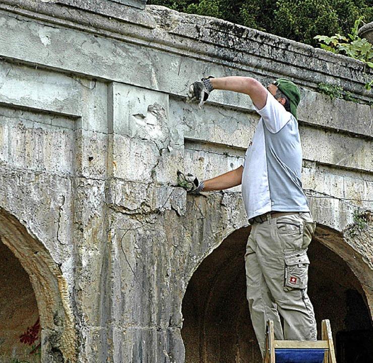 Einsatz in luftiger Höhe (rechts oben)... war das Mauerwerk völlig überwuchert.    Foto: Christiane Sahli