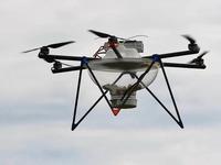 Drohnen fliegen in der Ortenau gegen den Maisz�nsler
