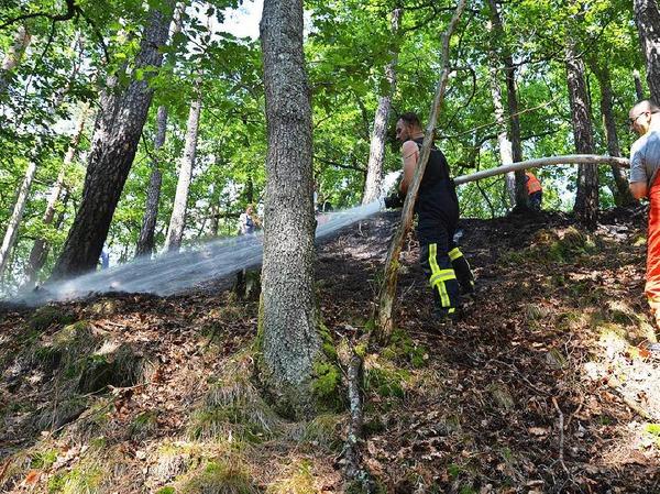 Die Freiwillige Feuerwehr Bad Säckingen musste einen Waldbrand zwischen Obersäckingen und Harpolingen löschen.