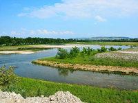 Natur erobert Rheininsel im Dreiland zurück