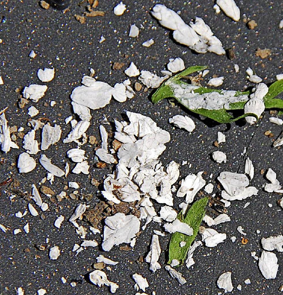 Weiße Flocken Unbekannte Partikel über Karsau
