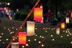 Fotos: Großer Andrang beim Bad Bellinger Lichterfest