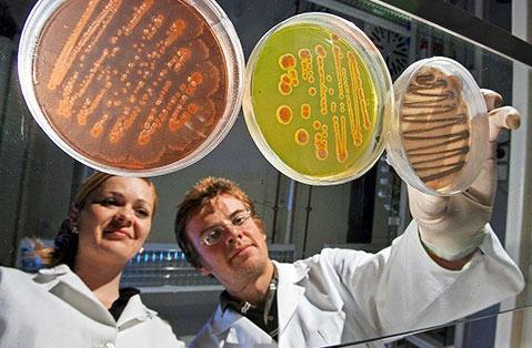 Junge Wissenschaftler: Kurzzeitvertr�ge statt Karriere