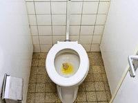 Kann man sich auf �ffentlichen Toiletten anstecken?