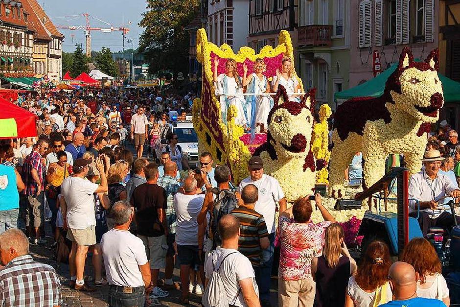 Farbenfroh und schrill ging es bei der 86. Corso Fleuri der Waldkircher Partnerstadt Sélestat zu. (Foto: christian ringwald)
