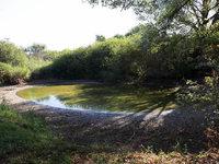 Gef�hrliche Altlast im Biotop: Forchheimer Teiche m�ssen weg
