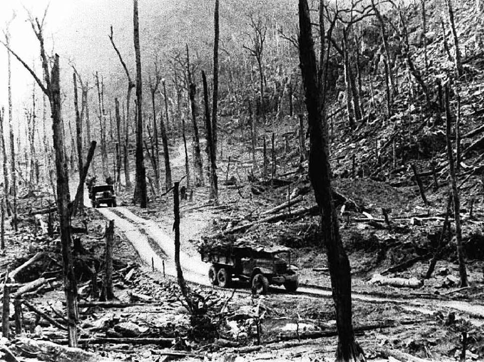 Vor 40 Jahren: Vietnam, ein verwüstetes Land  | Foto: Martin Egbert (2)/afp