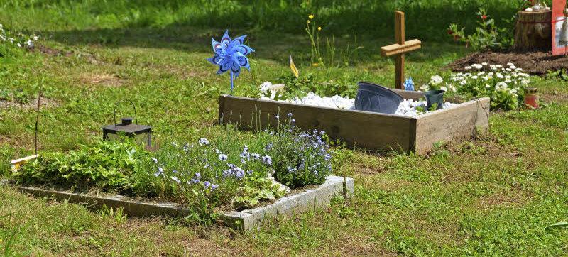 hier liegt der hund begraben l rrach badische zeitung. Black Bedroom Furniture Sets. Home Design Ideas