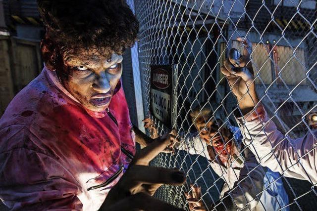 Horror Nights im Europa-Park: Das Grauen wartet