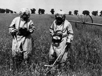 Nach Atomunfall: L�ffinger musste in Tschernobyl arbeiten