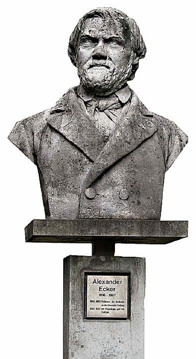 Das Alexander-Ecker-Denkmal beim Anatomischen Institut an der  Albertstraße     Foto: wegmann