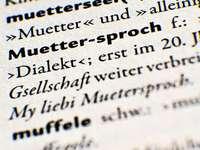 Dialekt im Berufsleben: Unprofessionell oder nur symbadisch?