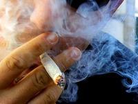 Freiburger Forscher widerlegen Cannabis-Test per Haaranalyse