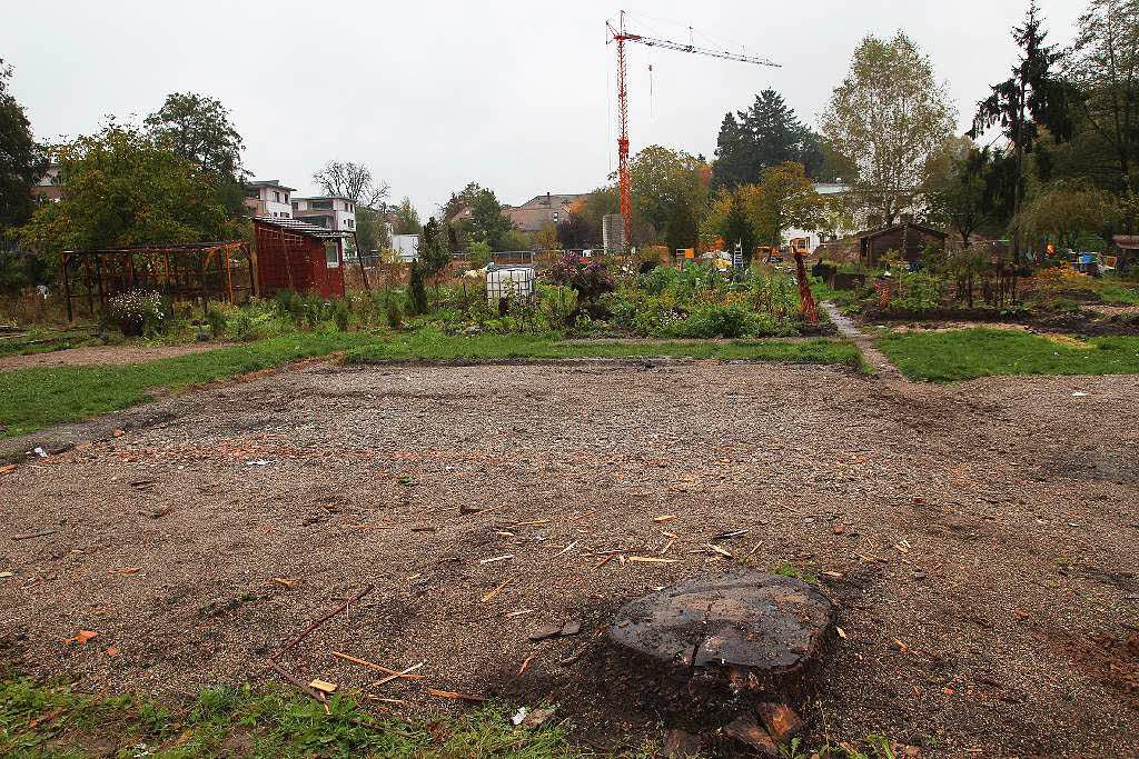 Schopfheim: Gartenidylle weicht Baugebiet: Kleingarten am ...
