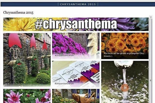 CHRYSAN-THEMA : Digital auf Vormarsch
