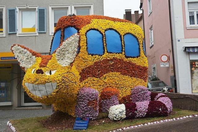 Steigende Besucherzahlen bei der Chrysanthema