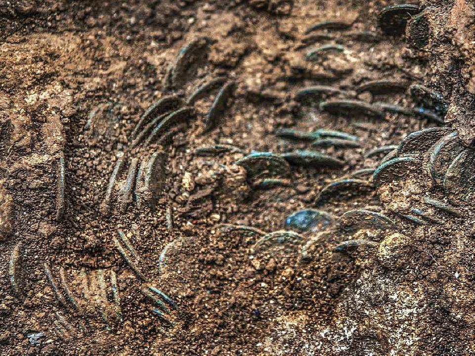 Ein Bauer im Aargau findet unter einem Kirschbaum über 4000 römische Münzen.  | Foto: Kantonsarchäologie Aargau