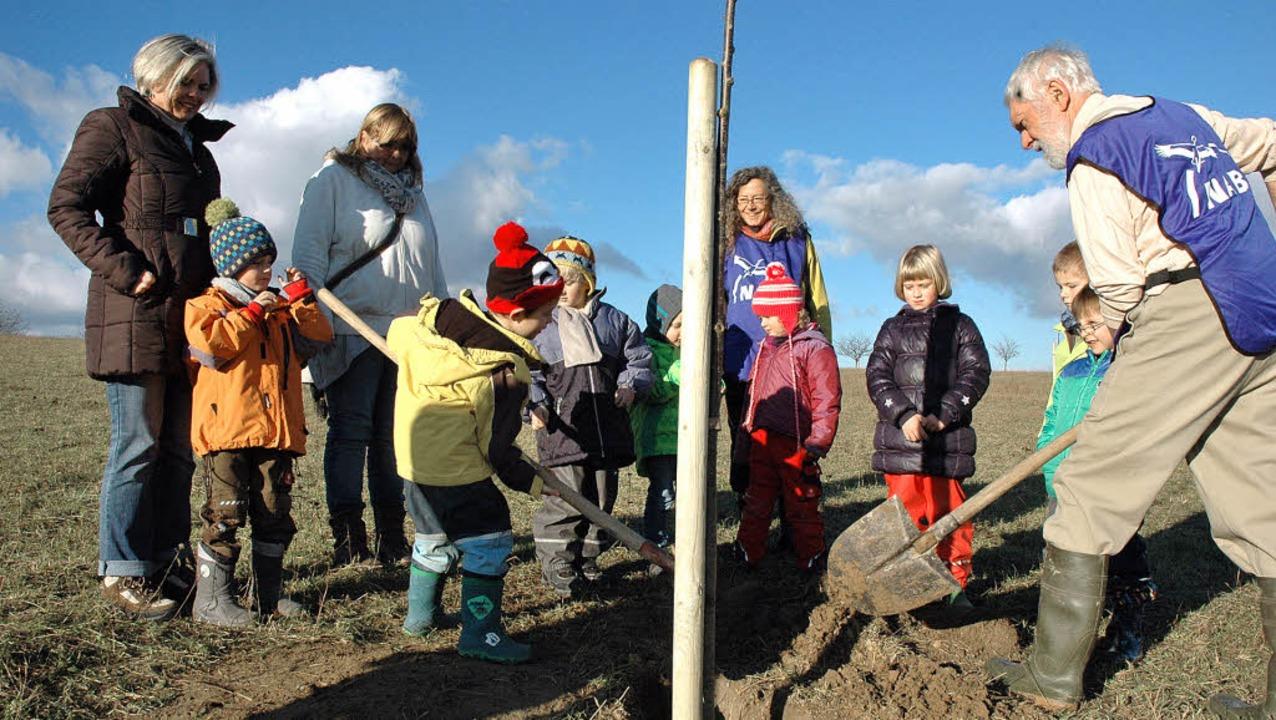Der Kindergarten Blansingen pflanzte m...eute sich, wie die Kinder anpackten.      Foto: Ounas-Kräusel
