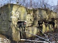 Viele Bunker-Ruinen sind heute wertvolle Biotope