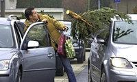 Damit der Baum gut ankommt
