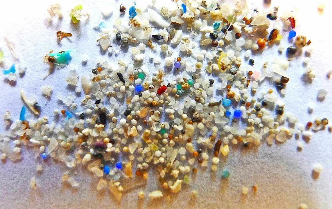 Mikroplastik-Teilchen mit einer Größe ...nd werden oft von Fischen aufgenommen.    Foto: dpa