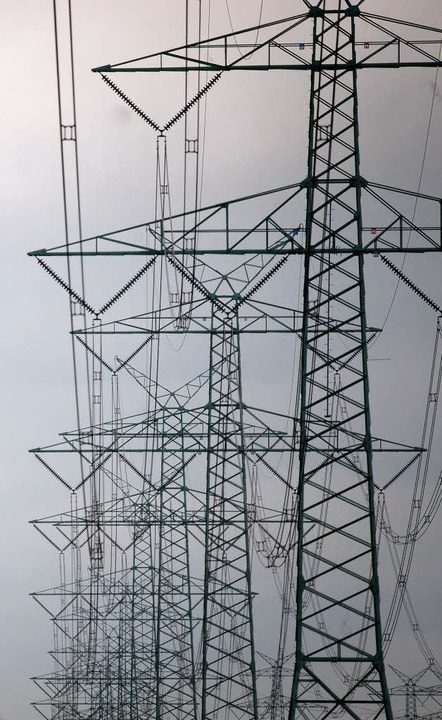Netzausbau muss sein, dennoch sollte E...; so eine Forderung beim Fachgespräch.    Foto: Dpa